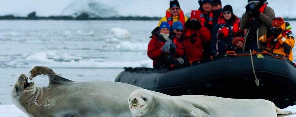 Antartica XXI