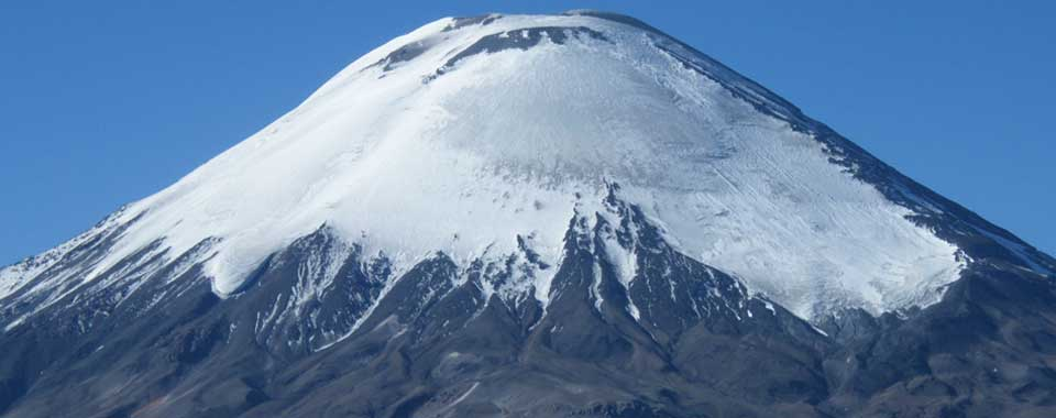 Singular Altiplano